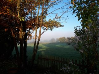 freetoedit morningsun autumn goodmorning