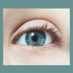 samsungphotography macro blueeye eye